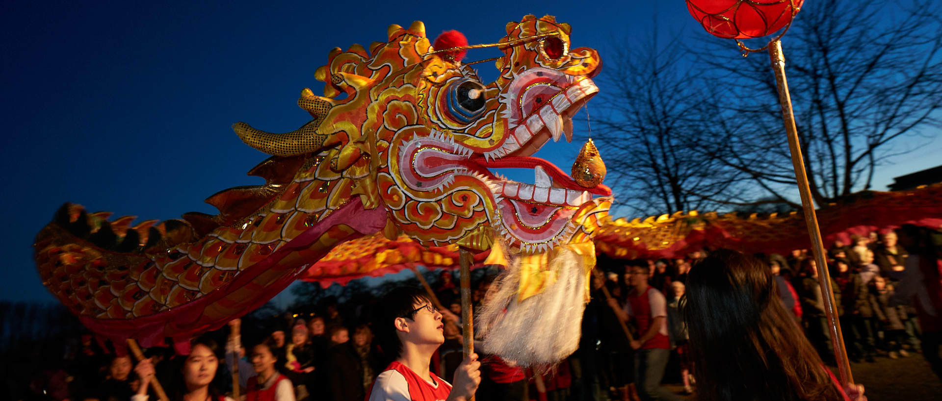 chinese new year spring festival